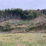 1日目 富津市放置竹林伐採
