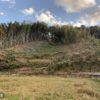 2日目 富津市放置竹林伐採
